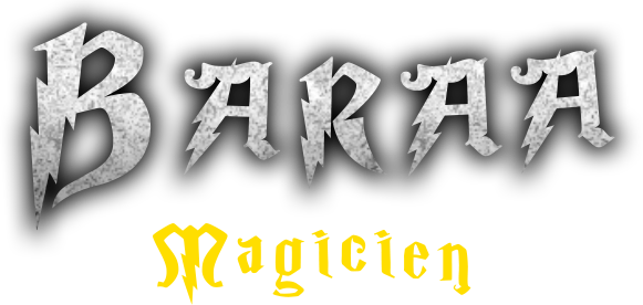 Baraa Magie : Magicien à Bruxelles pour enfant et adulte